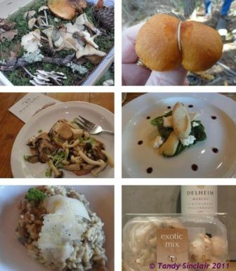 nouvelle mushroom week at delheim Gnocchi With Exotic Mushrooms