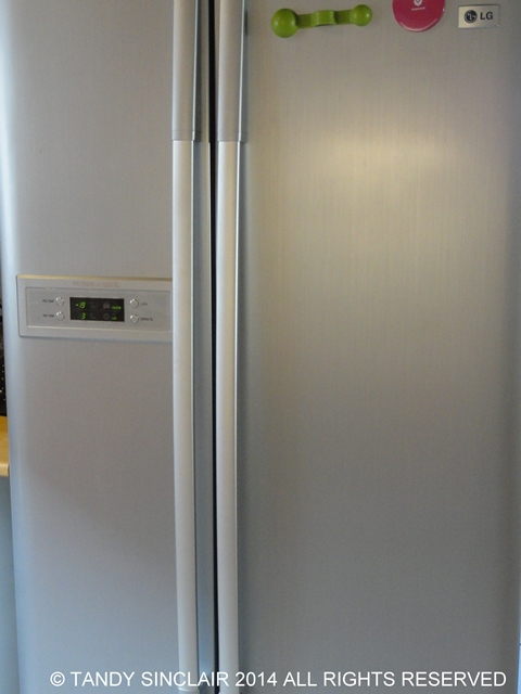 Newer Side by Side Fridge Freezer Buying And Stocking A Fridge