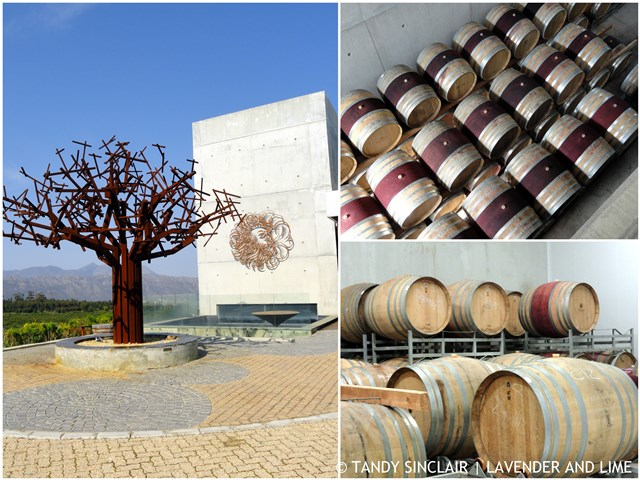 Good Wine Takes Time Wine Making At Waterkloof Wines
