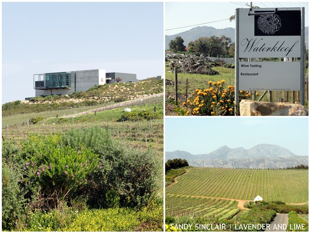 Welcome To Waterkloof Wine Tasting At Waterkloof