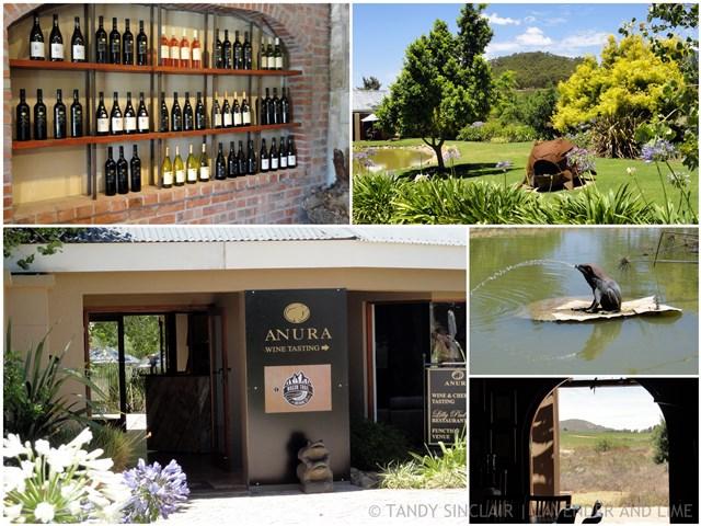 """""""Wine Tasting At Anura, Stellenbosch"""""""